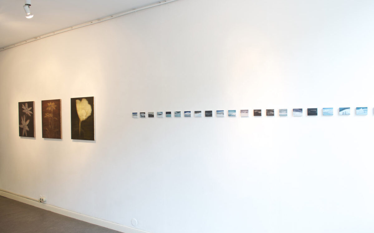 Exhibition view: In our nature  galerie Lutz Delft, 2014