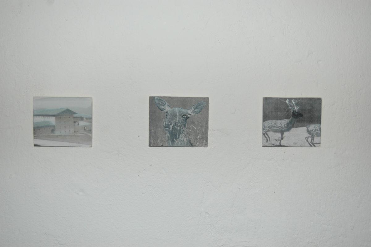 Exhibition view: Kweek galerie Langhuis Zwolle, 2009